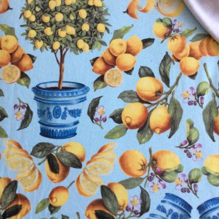 Metráž: Teplákovina citrony