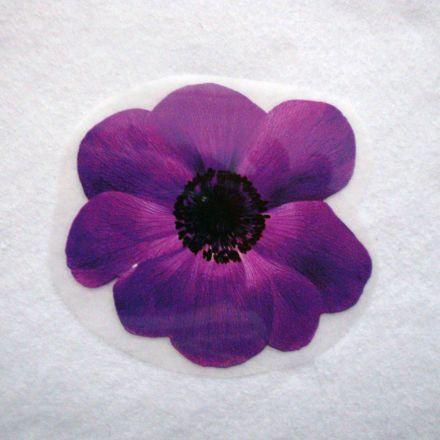Galanterie: Aplikace květ