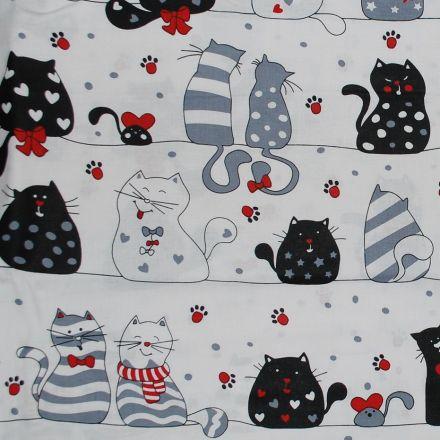 Metráž: Bavlna kočky š.160 cm