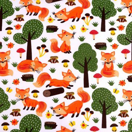 Metráž: Bavlněná látka liška
